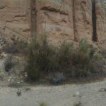 desierto enduro maxitrail11